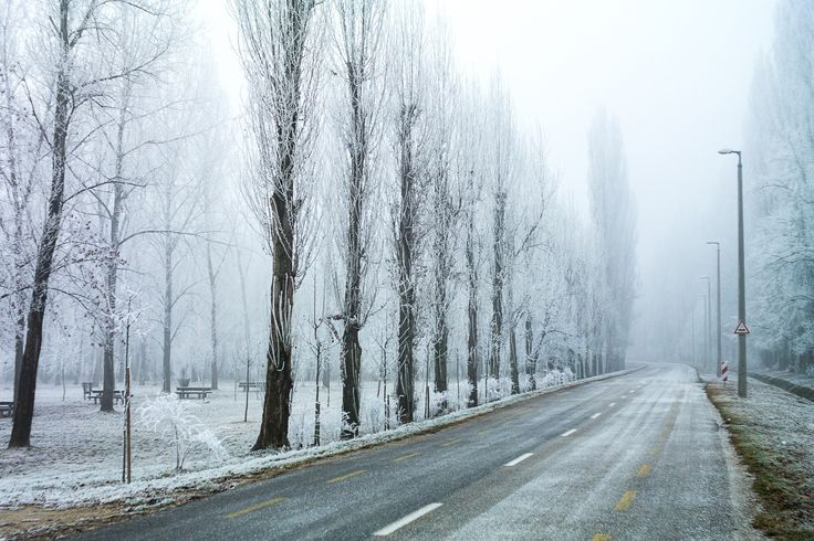 Frosty Road - Frost-covered road into the mist.