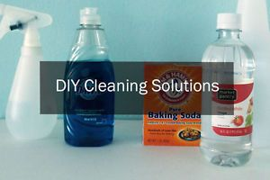 DIY Cleaning Solutions | eBay