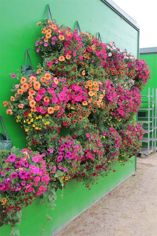 119 best Garten und Grünzeug images on Pinterest Vegetable garden