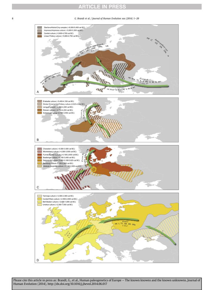 Human paleogenetics of Europe – The known knowns and the known unknowns - ResearchGate