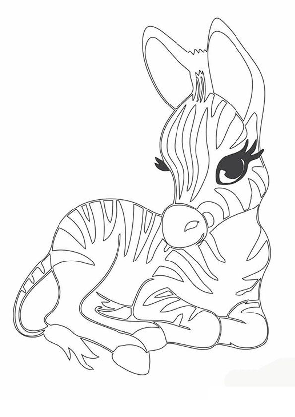 Baby Zebra Coloring Page Puppy Coloring Pages Animal Coloring Pages Zoo Animal Coloring Pages