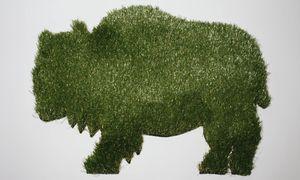 Synthetic Grass Buffalo Door Mat