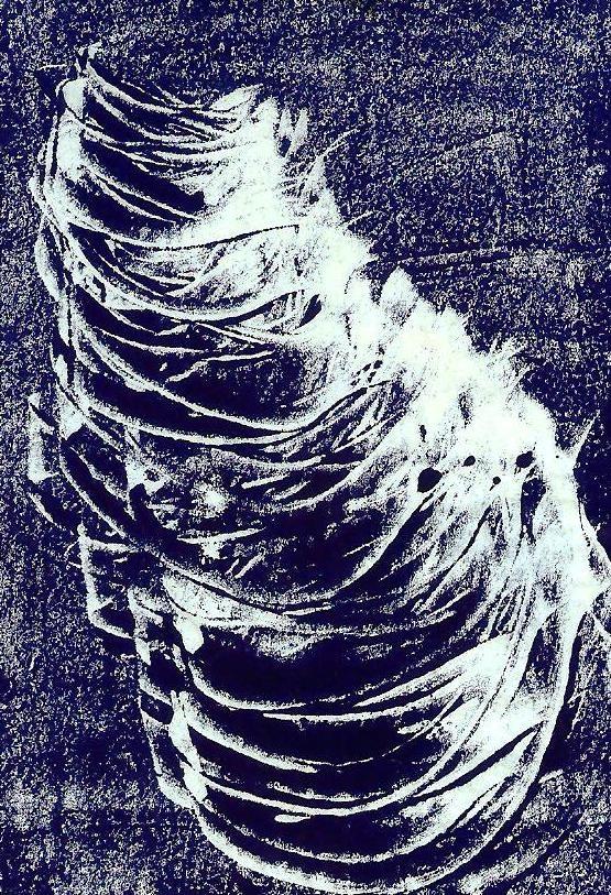 melanotypia.