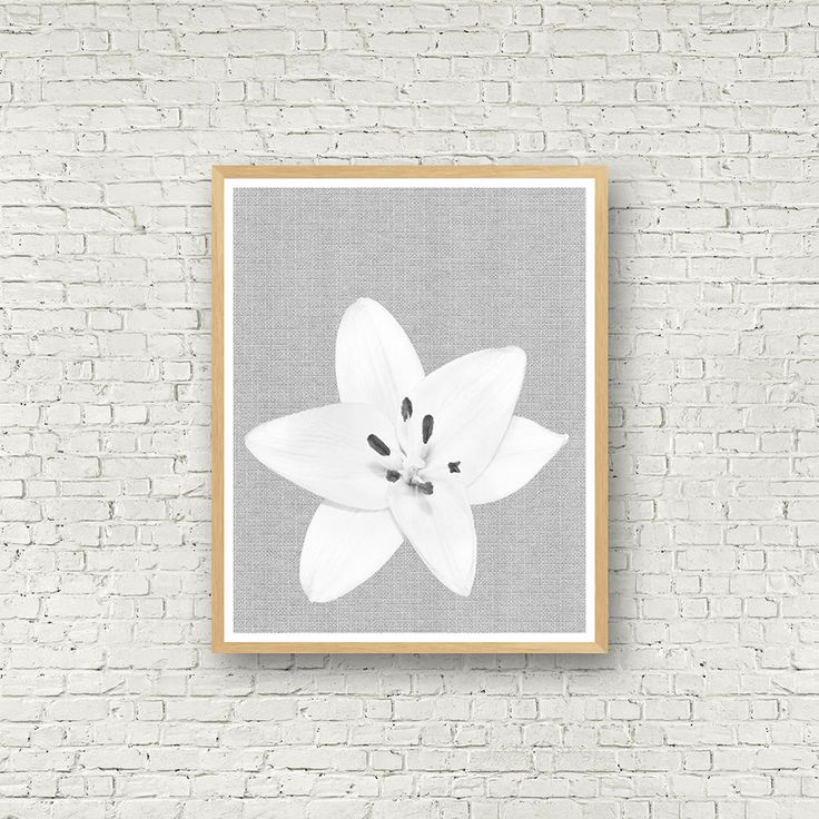 flower power white lily black and white illustration wall art instant download design gift. Black Bedroom Furniture Sets. Home Design Ideas
