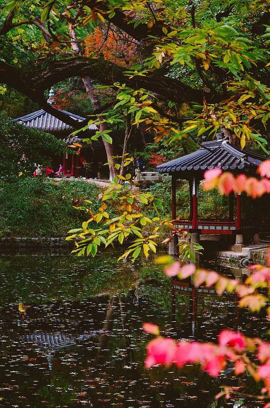 Changdeokgung(Korean Palace) in Autumn by Juni Lee | junibaum