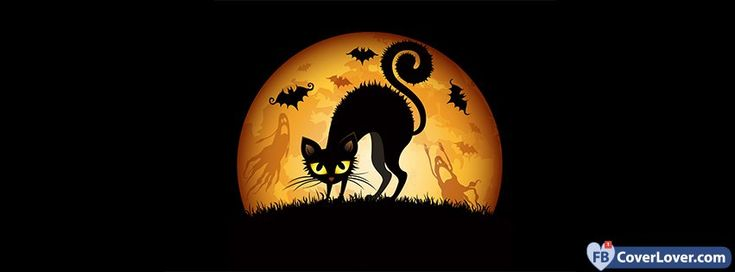 Halloween Cat And Bats - cover photos for Facebook - Facebook cover photos - Facebook cover photo - cool images for Facebook profile - Facebook Covers - FBcoverlover.com/maker