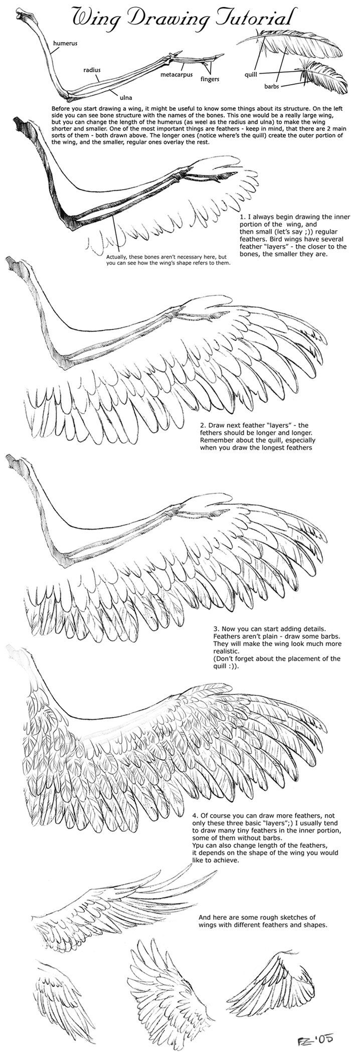 Tutorial: Wing Drawing by =Sheil repinned by www.BlickeDeeler.de ✤ || CHARACTER DESIGN REFERENCES | Find more at https://www.facebook.com/CharacterDesignReferences if you're looking for: #line #art #character #design #model #sheet #illustration #expressions #best #concept #animation #drawing #archive #library #reference #anatomy #traditional #draw #development #artist #pose #settei #gestures #how #to #tutorial #conceptart #modelsheet #cartoon @Rachel Oberst Design References