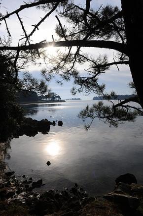 Quiétude sur le Golfe du Morbihan