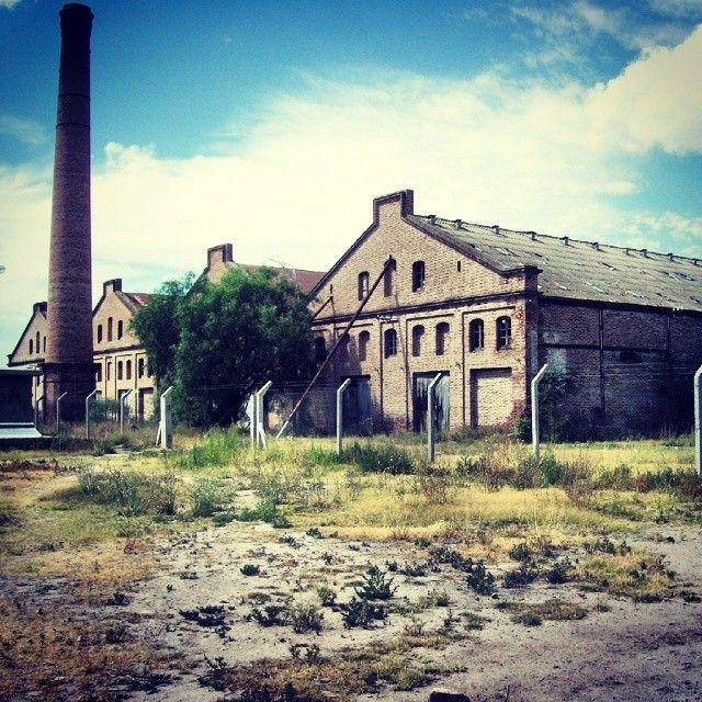 Vieja fábrica abandonada #bahiablanca #arquitectura #argentina #siglo20 #factory #abandoned #cerri