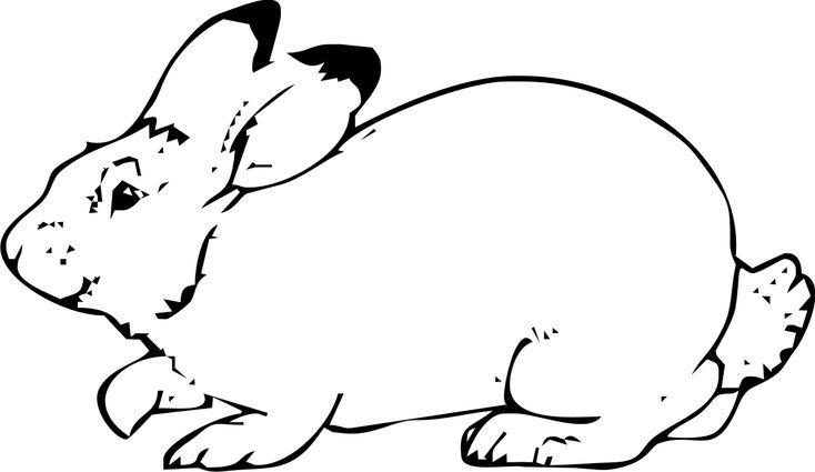 24 best images about disegni di animali on pinterest for Cani da colorare e da stampare