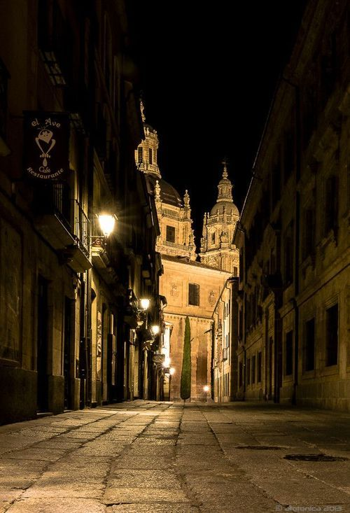 Cobblestone Street, Salamanca, Spain