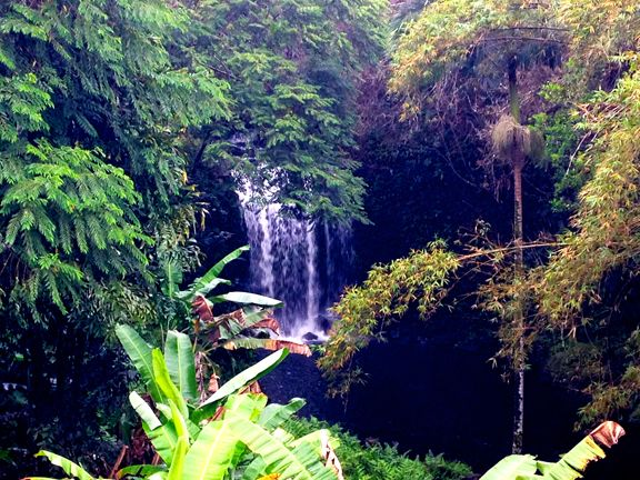 One of the three waterfalls on our amazing 8 acre healing property