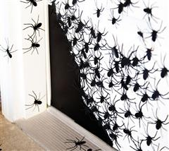 #Cricut 2-Project Center - Spider-Infested Door--gives you the creepies