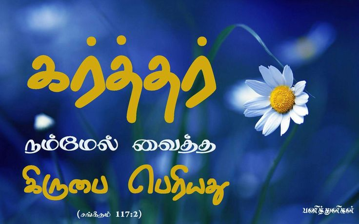 on Pinterest   Tamil Bible  Birthday Thank You Message and Bible Words
