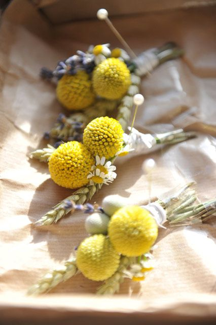 Craspedia, lavender and daisy buttonholes #yellow #wildflowers Flowers by Oops a Daisy - Gloucestershire