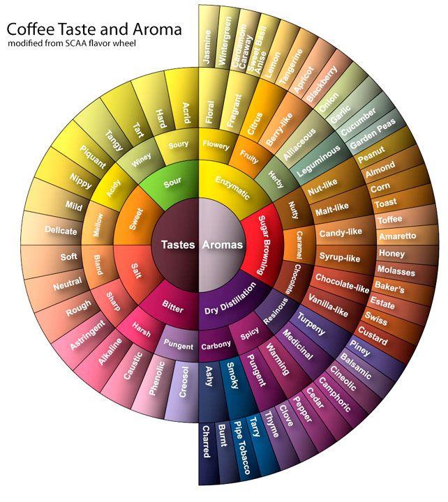 coffee taste & aroma wheel