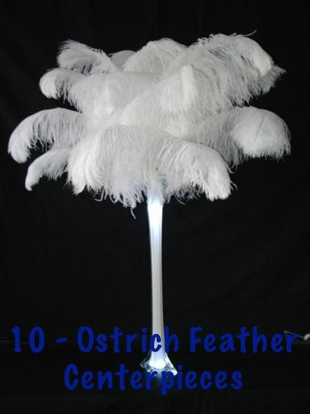 10  24 Tower Vase Ostrich Feathers Centerpieces