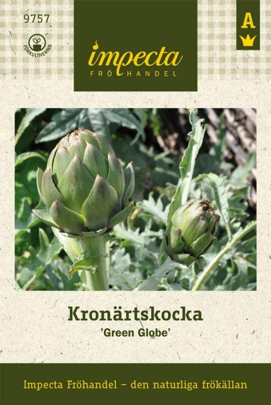 Kronärtskocka | Grönsaksväxter | Cynara cardunculus (Scolymus-gr) 'Green Globe' |
