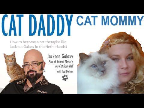 KATTEN   Hoe word je kattengedragstherapeut (zoals Jackson Galaxy)
