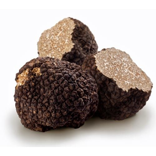Fresh Burgundy Truffles @ https://houseofcaviarandfinefoods.com/truffles/fresh-burgundy-truffles-detail #truffle #italiantruffle #frenchtruffle #blacktruffle #whitetruffle #albatruffle