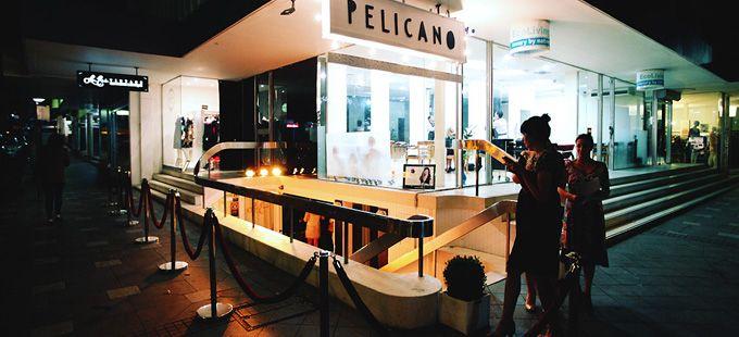 Pelicano, Double Bay