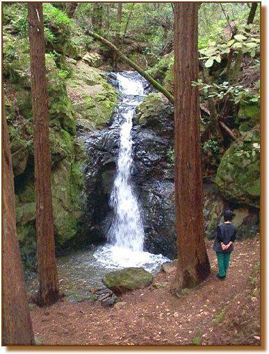 128 Best Beautiful Marin Images On Pinterest Landscapes