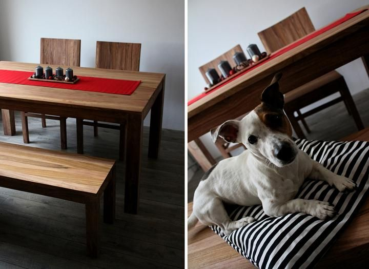 #wood #diningroom #dog #nordic #home