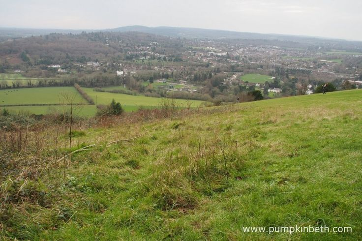 Box Hill in Surrey, pictured in December.