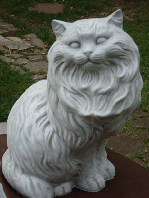 cat sounds meow