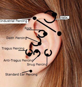 Best 25+ Ear piercing diagram ideas on Pinterest
