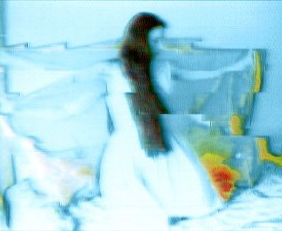 Annelies Štrba, Aya 133, 2002
