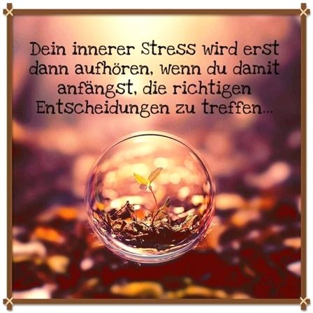 …! #dekoration #lebensstil #dekor #lebensstiländern #lebensstildekor #lebensstilsprüche #lebensstilgesunder – Die Gärtnerin