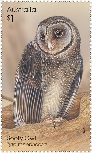 Four of Australia's nine species of owls are featured in the Owls stamp release.