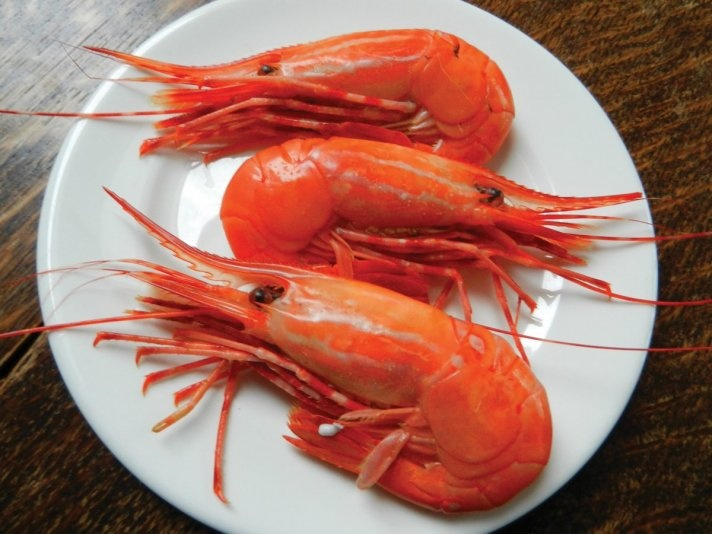 Spot prawn festivals in B.C.