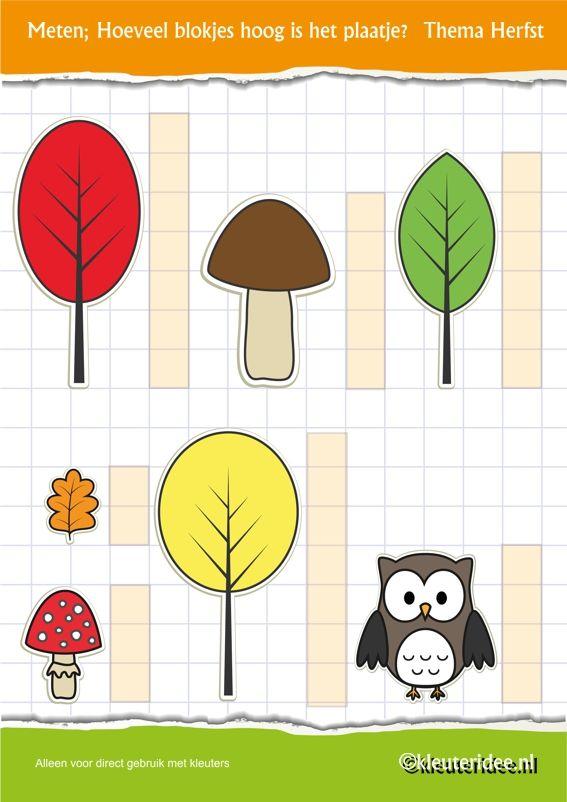 Meten , thema herfst voor kleuters, juf Petra van kleuteridee, Preschool autumn measuring , free printable.