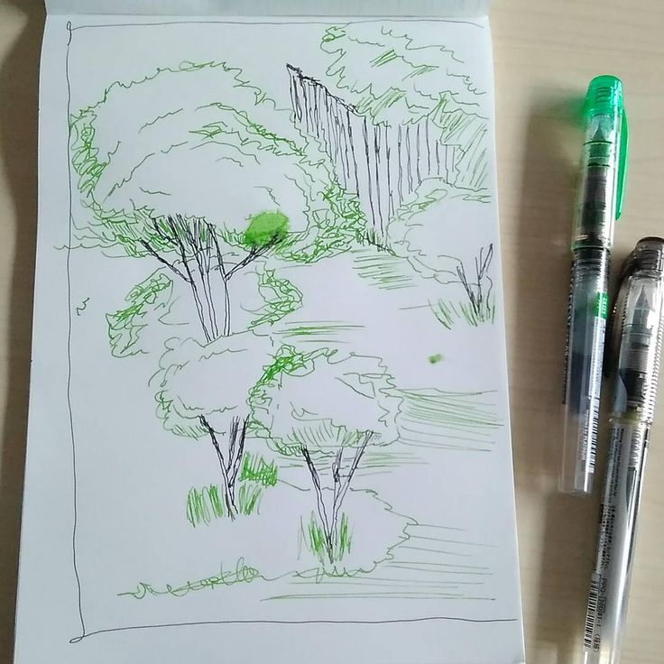 Pen sketch - Garden #sketching #drawing #illustration #preppyfountainpen