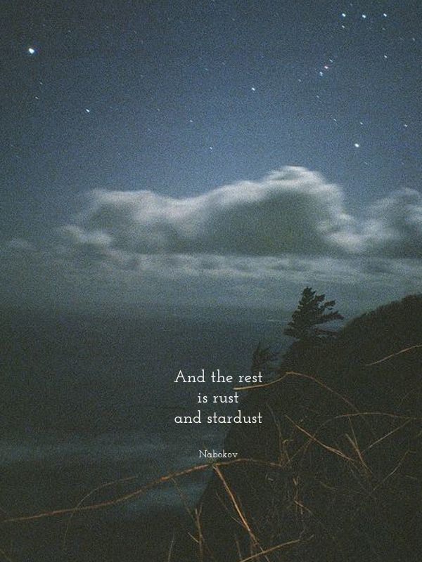 foxontherun:  And the rest is rust and stardust - Nabokov (via Spark)