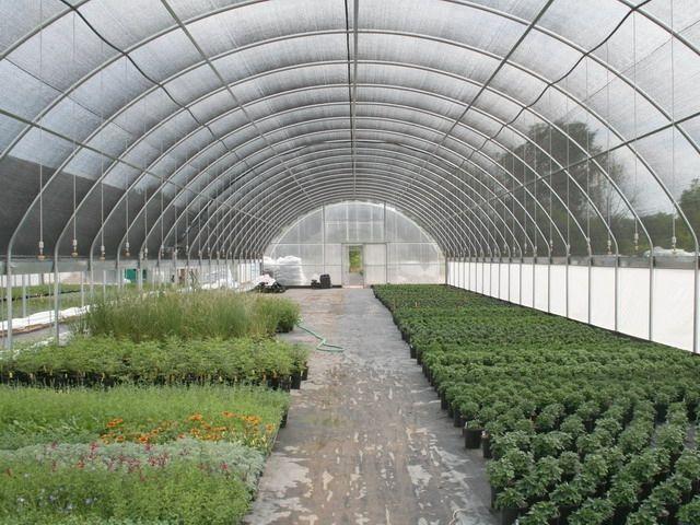 commercial greenhouse kits australia