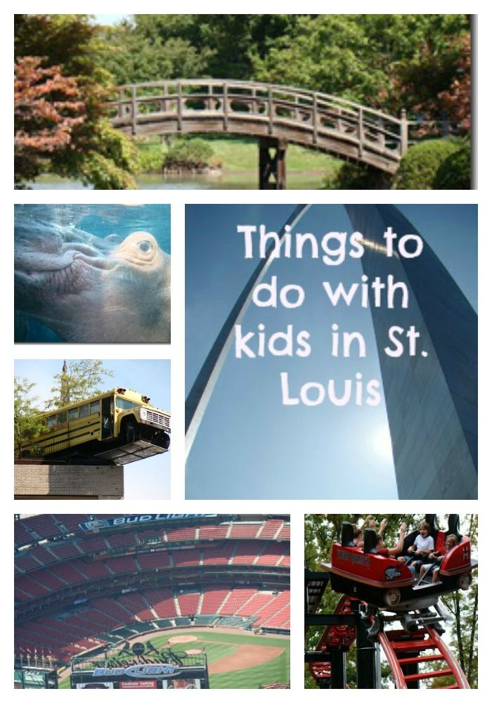 Things to do in St. Louis with Kids