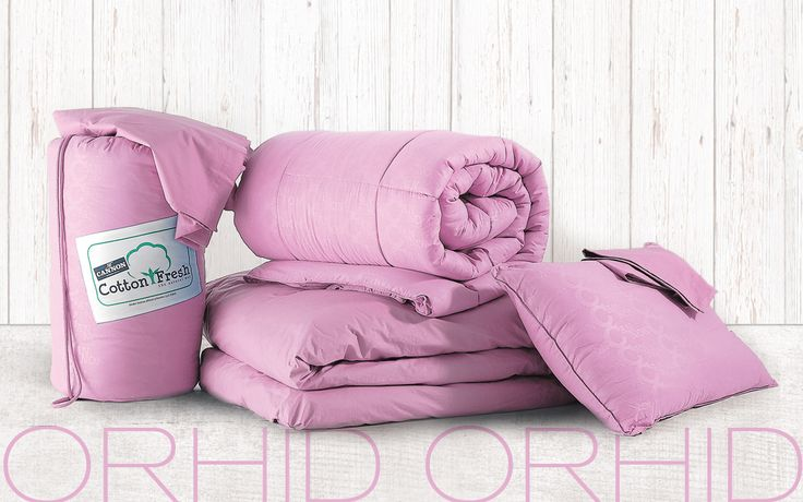 BED IN A BAG ORHID