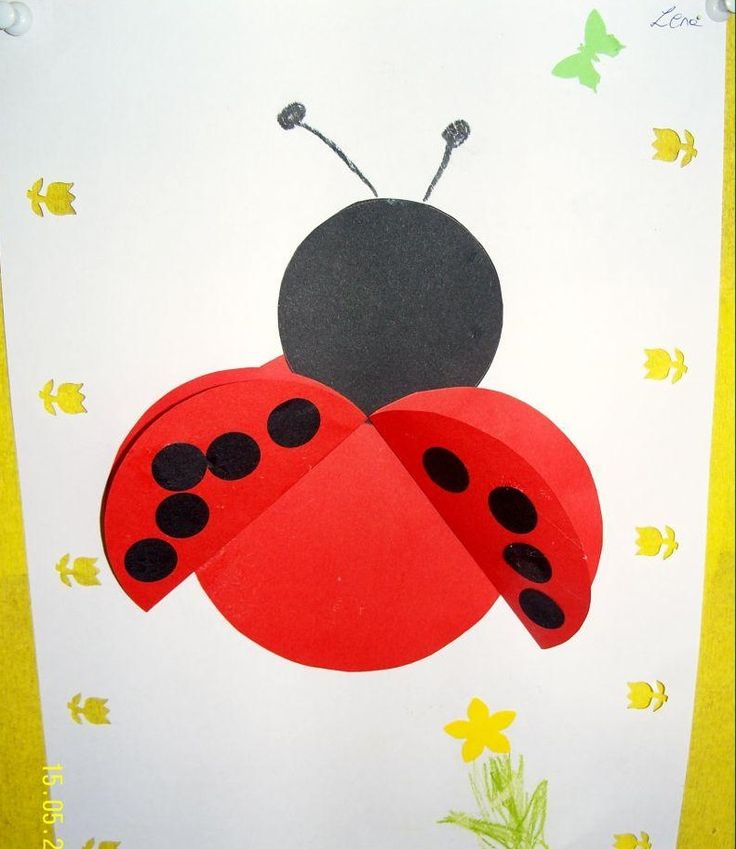 Paper plate ladybug craft ideas for kids Cd ladybug craft ideas Magnet ladybug craft ideas Paper ladybug craft ideas for preschoolers Ladybug door ... : paper plate lady bugs - pezcame.com