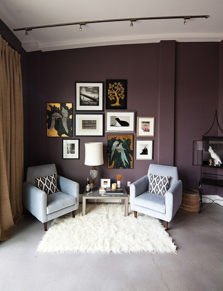 eclectic home deep eggplant purple wall paint design pictures remodel decor and ideas