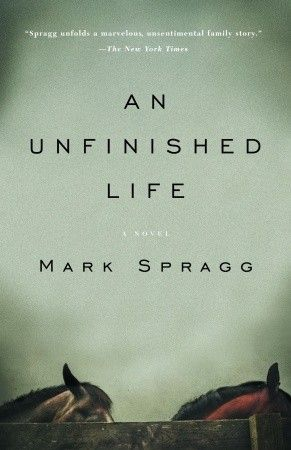 An Unfinished Life...a story of family dynamics,love,and forgiveness.Great read!
