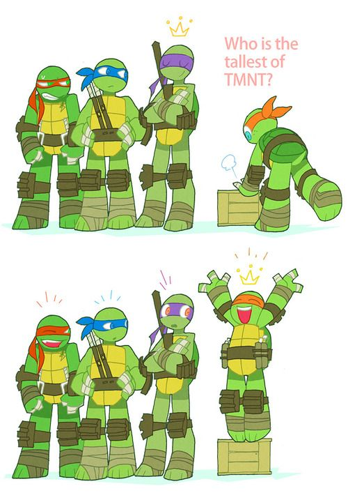 Who's the tallest?If my other turtles were on Pinterest they would agree with this! --- this is cute.