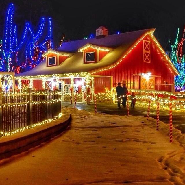 Life College Christmas Lights