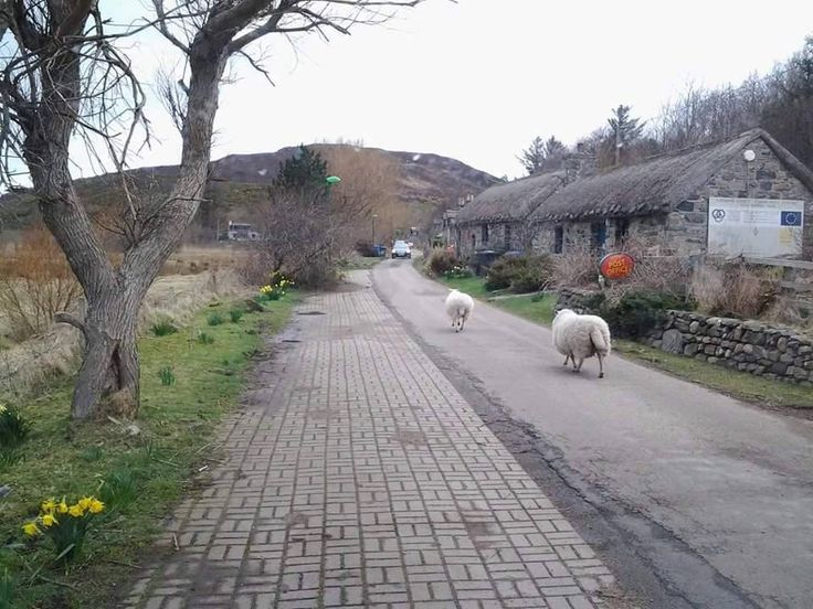 Skerray Village in Northern Scotland so quaint