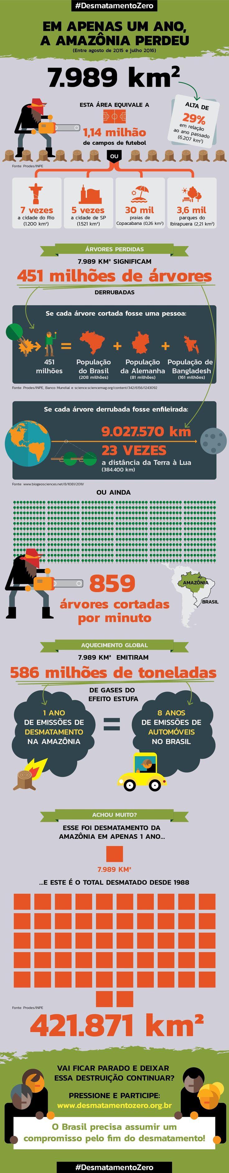 """""""O governo sinalizou que irá tolerar a destruição"""", observou Cristiane Mazzetti, da Campanha Amazônia do Greenpeace, à assessoria da instituição. """"Quando o desmatamento começou a cair, em 2005, o recado era outro, de que a devastação seria combatida, com grandes esforços de ONGs e dos setores público e privado.""""  O Pará se mantém recordista de destruição, com3025 km² de floresta destruída, 37% do total. Amazonas e Acre, que haviam melhorado suas políticas de conservação, sofreram aumentos…"""