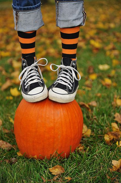 i am sooooo excited about this... maddie owns those shoes and ya KNOW she has funkie fun sox!!!  just need a pumpkin