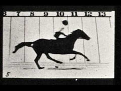 Meet the Art - Eadweard Muybridge Photographs of Motion. Video, 3:10. The Horse in Motion. Eadweard Muybridge. 1878 C.E. Photograph.
