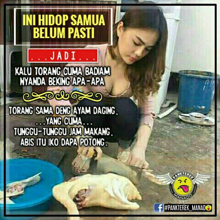 [•] Jadi klo nimau mo beking sama deng ayam daging? So itu bagara..!!! ° ° ° #Pankterek_Manado  #Cuma_Bakusedu  #Admin_Chex🎭Alcatraz